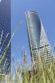 Skyscraper — Стоковое фото