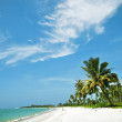 Stock Photo: White sand beach