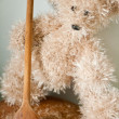 Teddy bear — Stock Photo #11879696