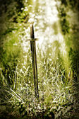 Magic sword — Foto Stock