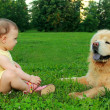 Fun baby girl in dress sitting near dog on grass and looking out — Stock Photo