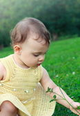 Adorable baby girl in dress looking on flower and green grass on — Stok fotoğraf