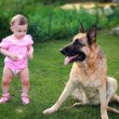 Small baby serious looking on big dog with caution outdoors on g — Stock Photo