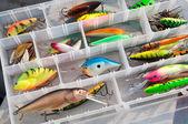 Box fishing — Stock Photo