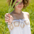 Young girl holding a ear of wheat — Stock Photo #11010142