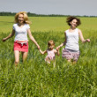 Families have fun in the field — Stock Photo