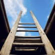 Ladder - the symbol of the career steps — Stock Photo