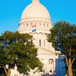Stock Photo: State Capitol Building in Madison