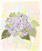 Greeting card with hydrangea.Illustration hydrangea. — Stok Vektör