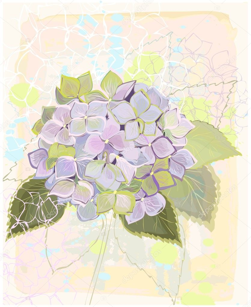 Greeting card with hydrangea.Illustration hydrangea.   — Stock Vector #11119526