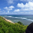 Stock Photo: Elevated view at Larsen's beach, North shore, Kauai
