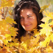Beautiful woman with golden maple — Stock Photo