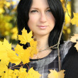Royalty-Free Stock Photo: Attractive woman with yellow maple