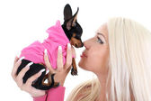 Close-up portrait of young woman with toy-terrier over white — Stock Photo
