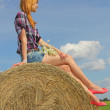 Girl sitting on straw bale — Stock Photo