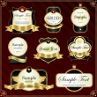 Detailed ornate vintage label set. — Stock Vector