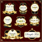 Detailed ornate vintage label set. — Vector de stock