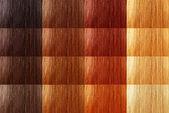Set of natural tint color hair — Stock Photo
