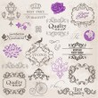 Vector Set: Calligraphic Design Elements and Page Decoration — Stock Vector #11159116