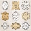 Vector Set: Vintage Frames, Calligraphic Design Elements — Stock Vector #11414596