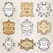 Vector Set: Vintage Frames, Calligraphic Design Elements — Stock Vector