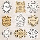 Vector Set: Vintage Frames, Calligraphic Design Elements — Stock Vector