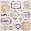 Vector Set: Calligraphic Design Elements and Page Decoration — Stock Vector #12135900