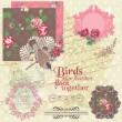 Scrapbook Design Elements - Vintage Flowers and Birds- in vector — Stock Vector