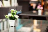 Jarrón con flores. — Foto de Stock