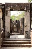 Ancient Buddha statue in Polonnaruwa - vatadage temple — Stock Photo