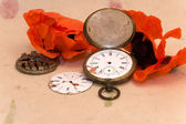 Old pocket watch and poppy — Stock Photo