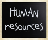 """Human resources"" handwritten with white chalk on a blackboard — 图库照片"