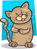Brown tabby kitten — Stock Vector