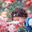 Baby girl smelling pink roses - Stock Photo