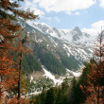 Mountain Landscape — Stock Photo #10898684