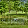 Stock Photo: Golf scenery 2