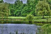 Golf scenery — Stock Photo