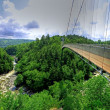 Suspended bridge 2 - Stock Photo