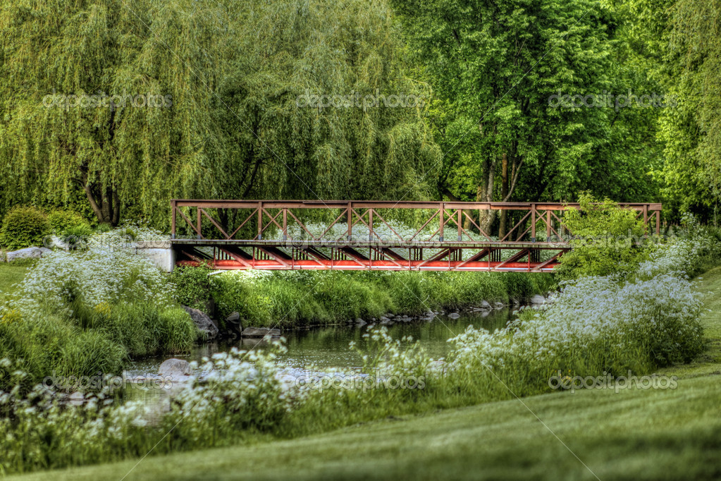 Golf green and water hazard with small bridge — Lizenzfreies Foto #10934154