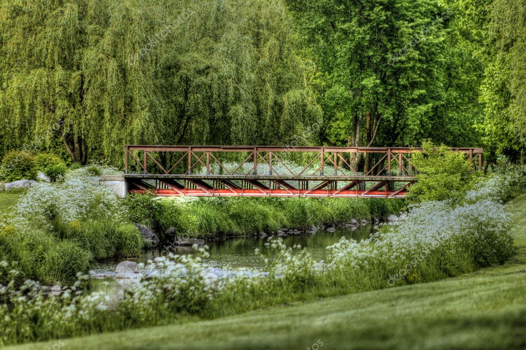 Golf green and water hazard with small bridge — Stock fotografie #10934154