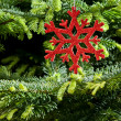 Red (artificial) snowflake ornament — Stock Photo #11110668