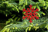 Red (artificial) snowflake ornament — Foto Stock