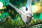 Decorative bird shape ornament — Stock Photo