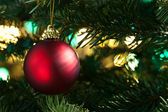 Decorative red bauble in a Christmas tree — Stock Photo