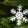 White snowflake in a fresh green Christmas tree — Foto Stock
