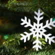 White snowflake in a fresh green Christmas tree — Stockfoto