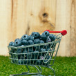 Blueberries in a shopping cart — Foto de Stock