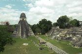 Ancient mayan ruins in jungle Tikal — Stock Photo