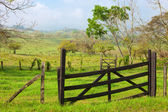 Wood gate in green field — Stock Photo