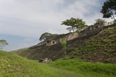 Maya ruins in jungle, Tonina in Mexico — Stock Photo